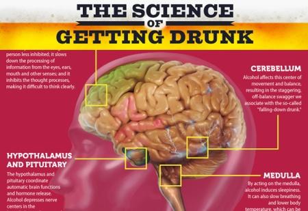 brain-drunk