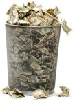 money-trashcan