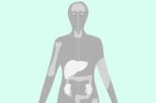 nutrients-body-needs-in