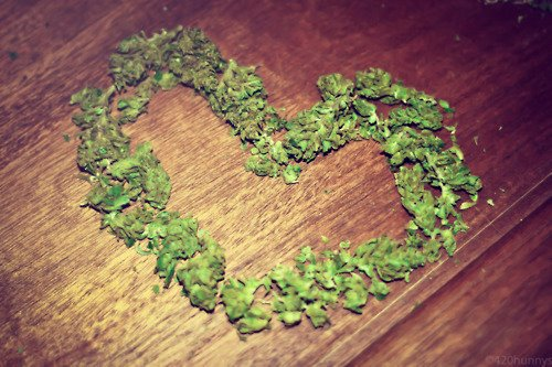 We-Love-Marijuana