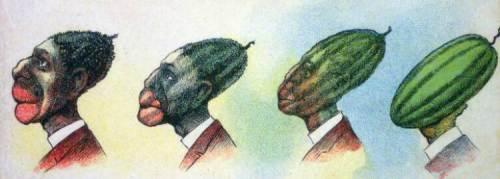 watermelon_edited